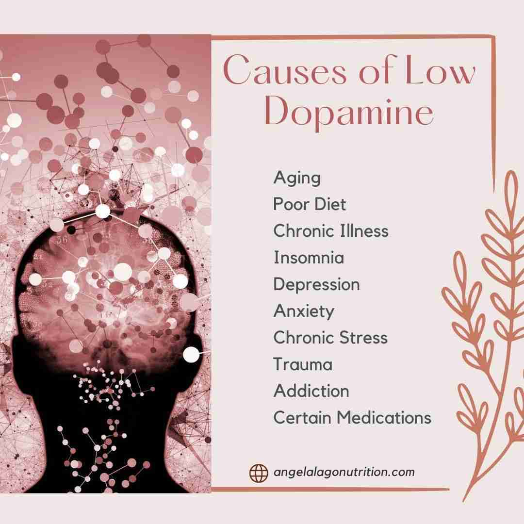 Causes of Low Dopamine Levels